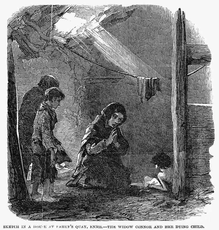 the great irish famine One of the single-most influential events in us immigration history, ireland's great potato famine induced a massive wave of irish emigration to great britain.