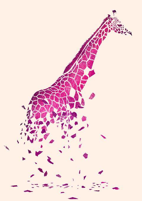 Pretty giraffe