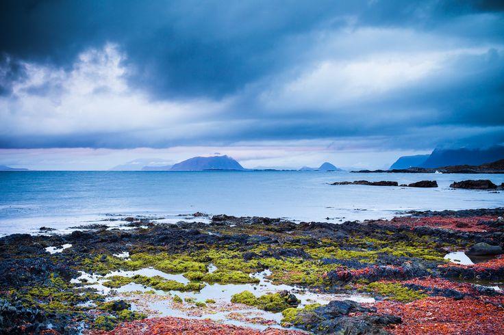 runde island II / norway by Martin Zorn on 500px