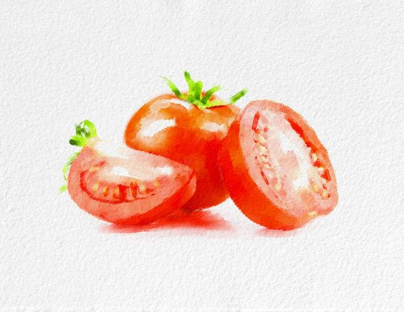 Tomatoes Still Life Watercolor Painting