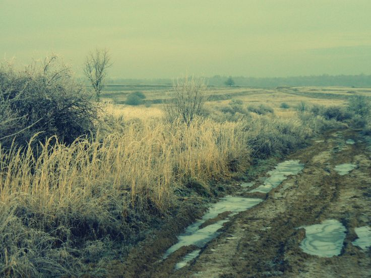 Winter landscape #winter #landscape #czechrepublic