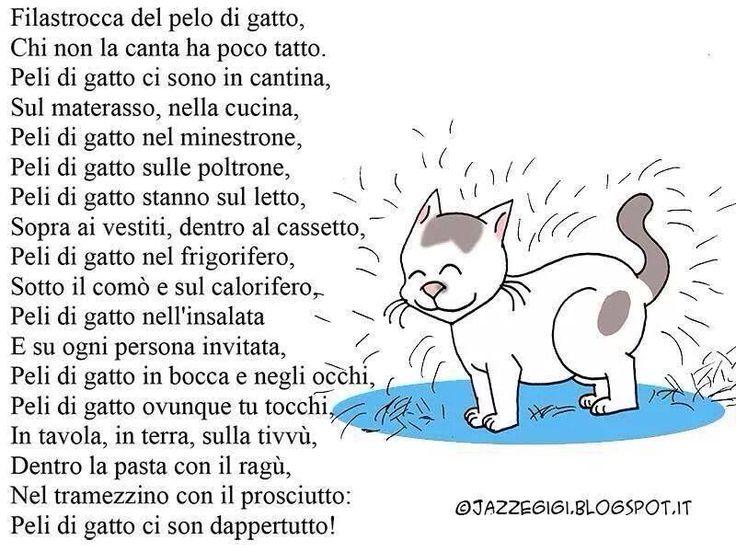 Peli di gatto