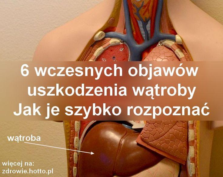 zdrowie.hotto.pl-objawy-uszkodzenia-watroby-jak-szybko-rozpoznać