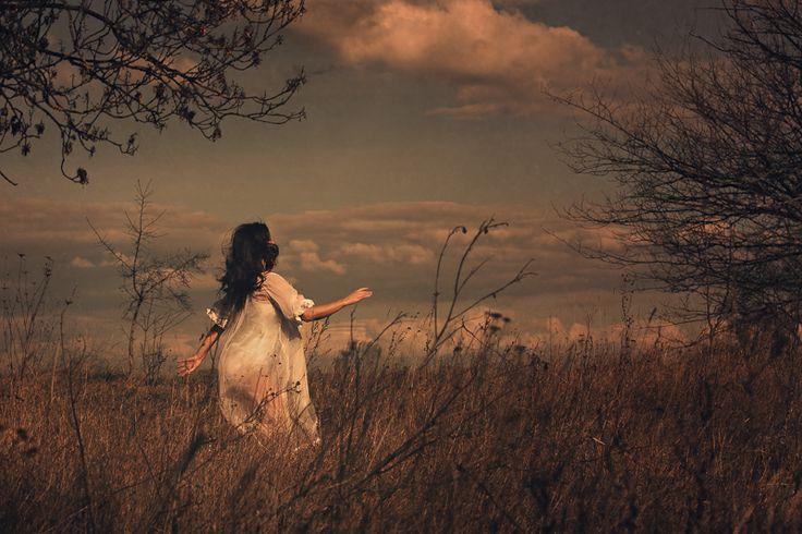 In the field of dreams