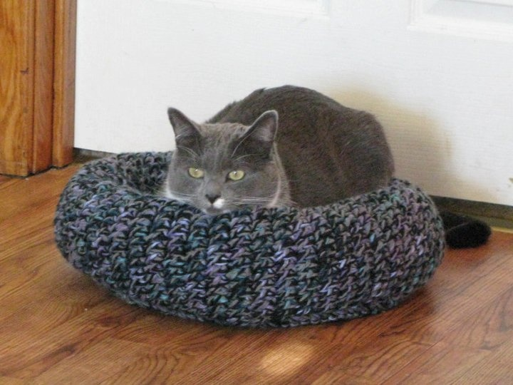 18 best Knitted cat beds images on Pinterest | Pets, Cat ...
