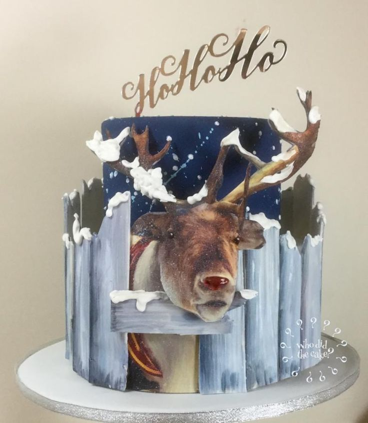 Henry the Christmas 3D reindeer  by Who did the cake (Helen Wilkinson)