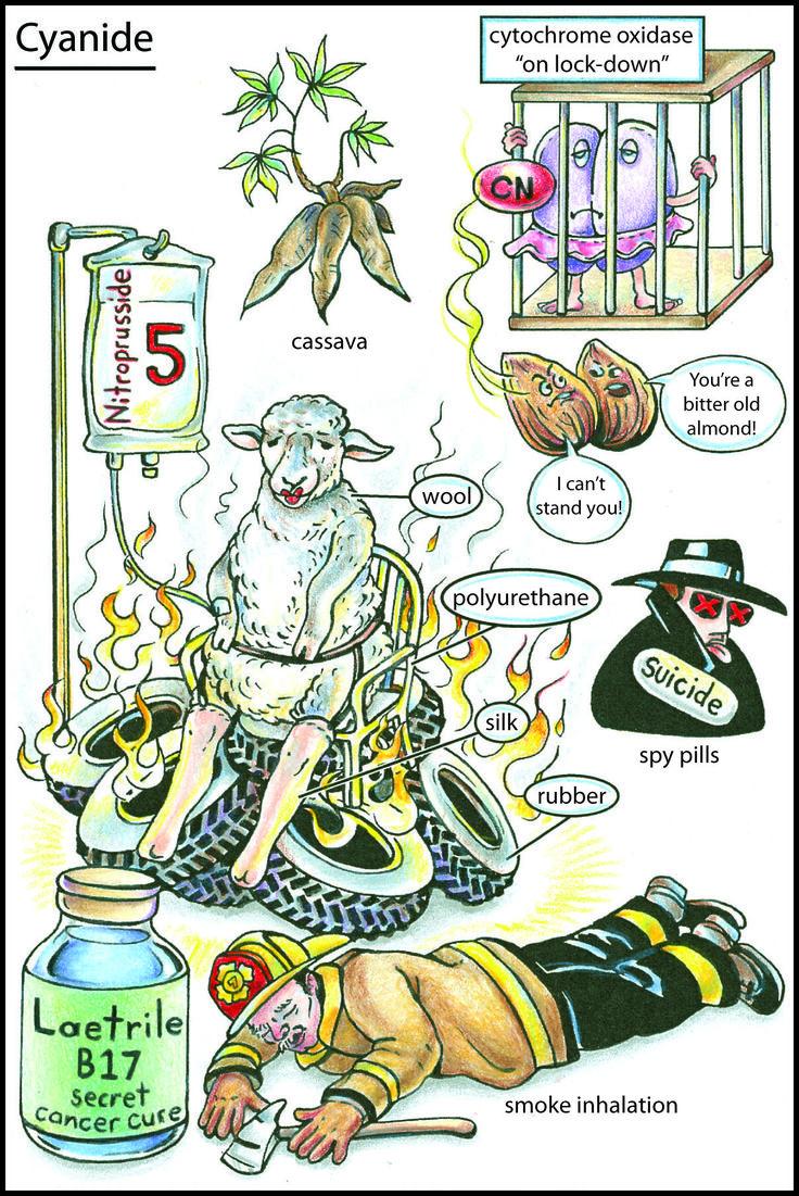 Video Flashcard: Cyanide Poisoning – Kloss & Bruce FIREFIGHTING - A VERY DANGEROUS BUSINESS!