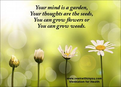 Positive Thoughts Change our Thinking and Behaviour