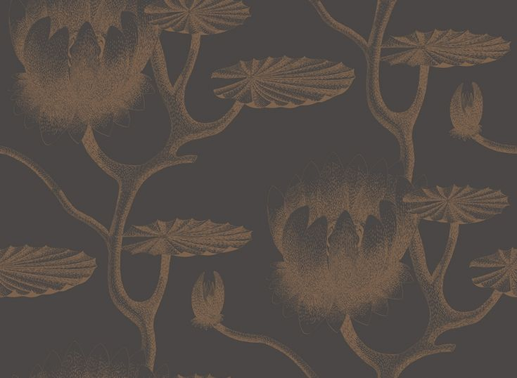 Lily (95/4021) - Cole & Son Wallpapers - A large scale all over design of a botanical lily – in bronze with black, giving a magical delicate effect. More colours are available. Please order a sample for true colour match. Paste-the-wall product.