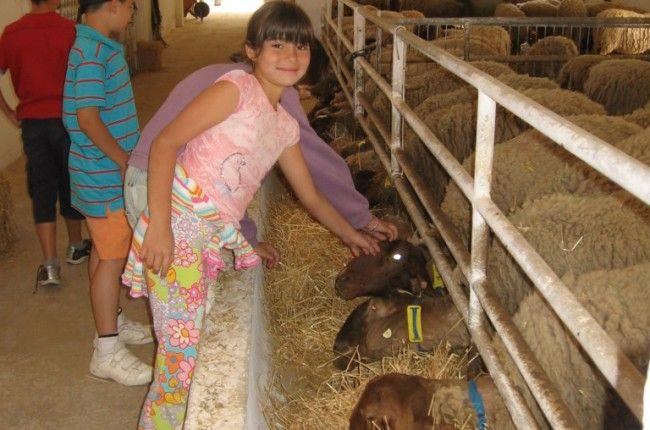 Un proyecto sostenible, con una alimentación local y ecológica y casera, con actividades para toda la familia: http://www.viajarenfamilia.net/viajes/vacaciones-en-granja-escuela/