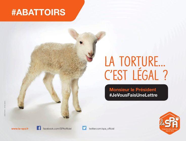 EN IMAGES - L'association lance lundi à Paris et dans les grandes villes de France une vaste campagne avec trois affiches évoquant l'abattage des animaux.