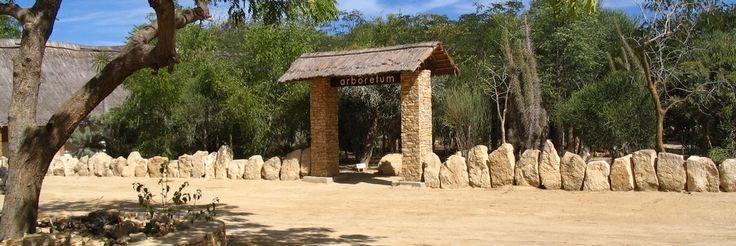 Antsokay arboretum, Madagascar