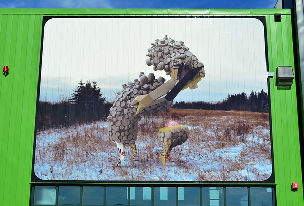 Ambleside Ecostation Mural