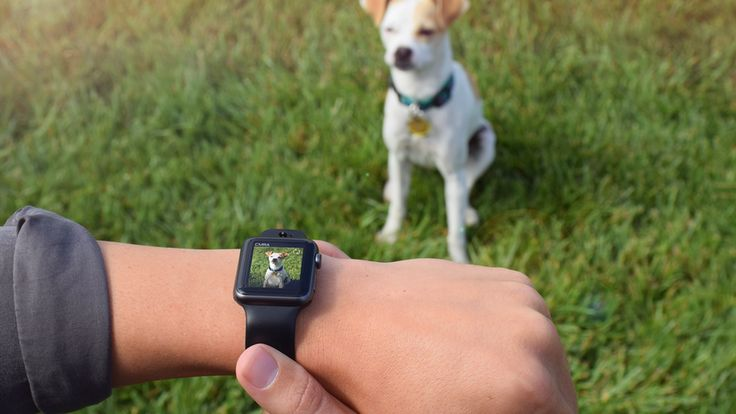 CMRA camera band turns your Apple Watch into a first-gen Galaxy Gear