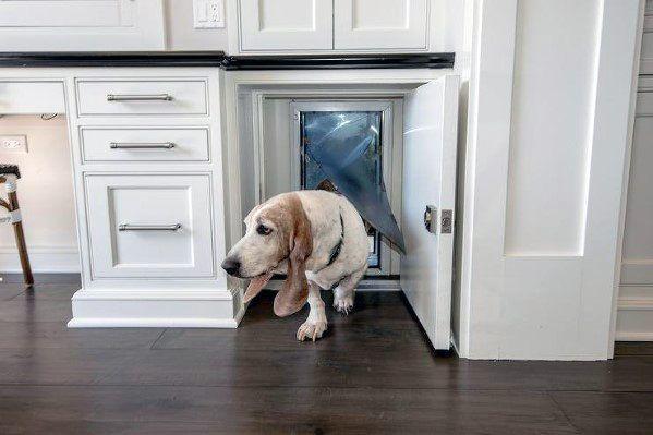 Top 50 Best Doggy Door Ideas Canine Convenience Designs Dog