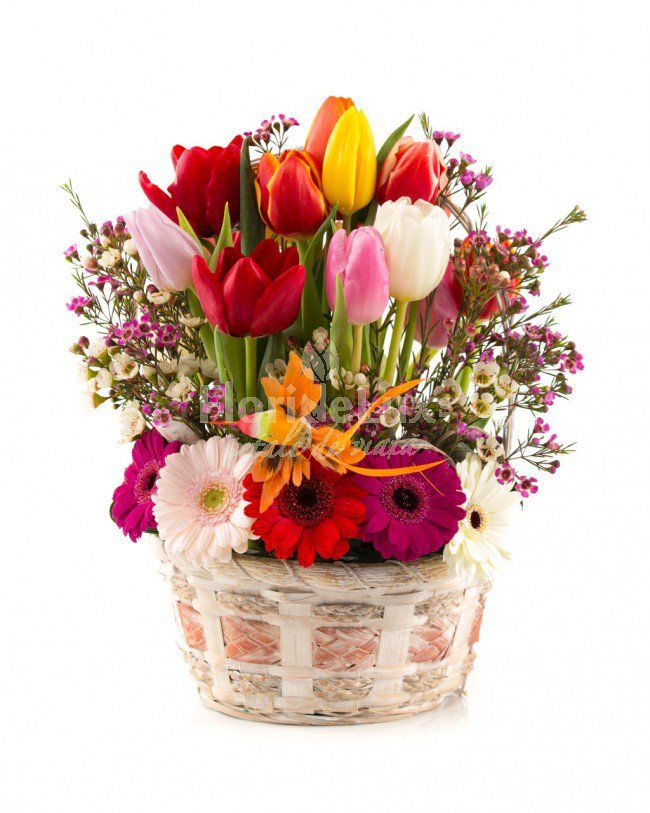primavara se apropie, cu alaiul ei de flori... 🌺🌷🌹🌼 🍀 citeste pe blog Aranjamente flori 1 martie: https://goo.gl/tWI5Bv 💌 comanda online Flori de primavara: https://goo.gl/tucRv1