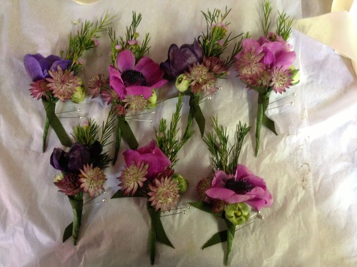 Boutineers of anemone
