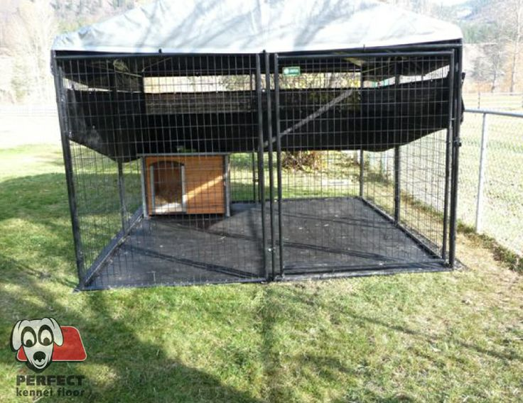 1000 Ideas About 10x10 Dog Kennel On Pinterest Dog