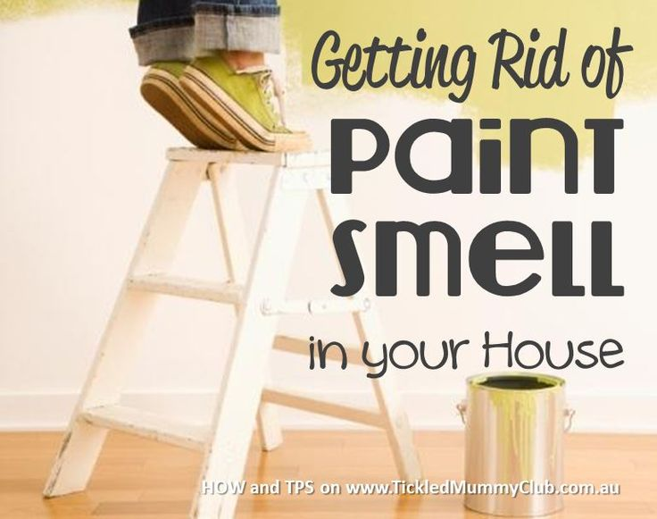 Getting Rid Of The Smell Of Paint In A Room