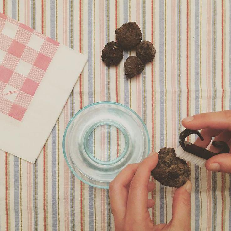 "Cleaning black truffles. Also called ""the black gold"" this gourmet gem has got a pungent aroma and not replicable flavour #blacktruffle #truffle #foodsgram #blackgold #tartufo #tartufonero #oronero #truffel #truffe #trufa #risotto #pasta #ohitaly #italianeats #gourmet #gourmetfood #gem #f52food #comfortfood #nomnom #homecooking #whatsforlunch #aroma #flavour #eatrealfood #healthyeats #italianfood #truffleitalia"