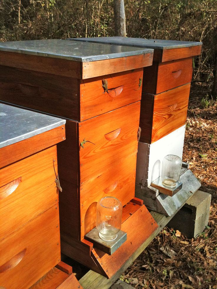 a site with a lot of information worth checking out called: honey bee suite; a better way to bee