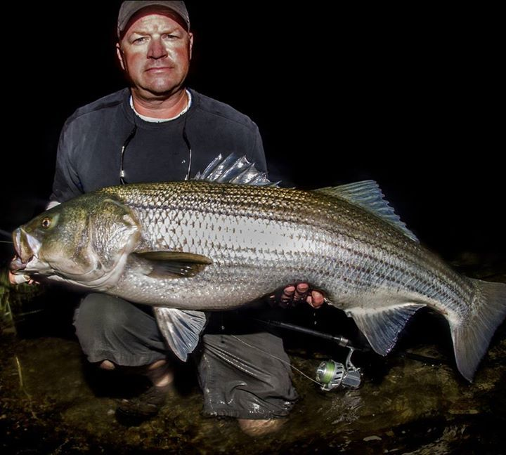 catch & release Please! :) - https://northeast.skifflife.com/102119/catch-release-please-3/