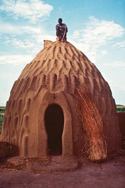 architecture « Celle de la tribu des Mousgoum (Cameroun). Leurs cases en pisé intègrent l'échafaudage à la structure, et les motifs servent de marches.