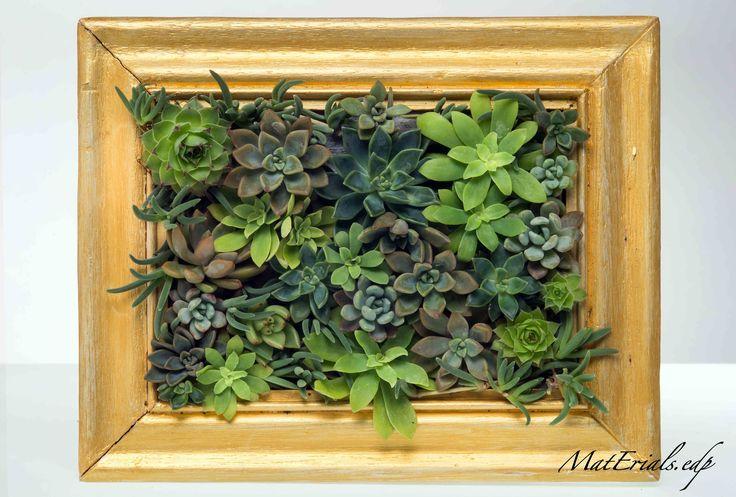 quadro piante grasse, Succulents Plants. Hand Made