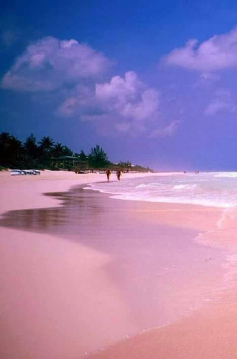 17 best images about pink beaches on pinterest bermudas for Pink sands beach in harbour islands