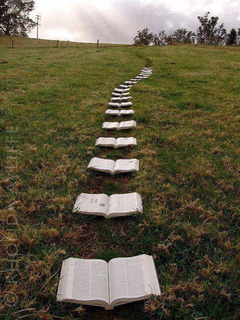 Le chemin de la connaissance...