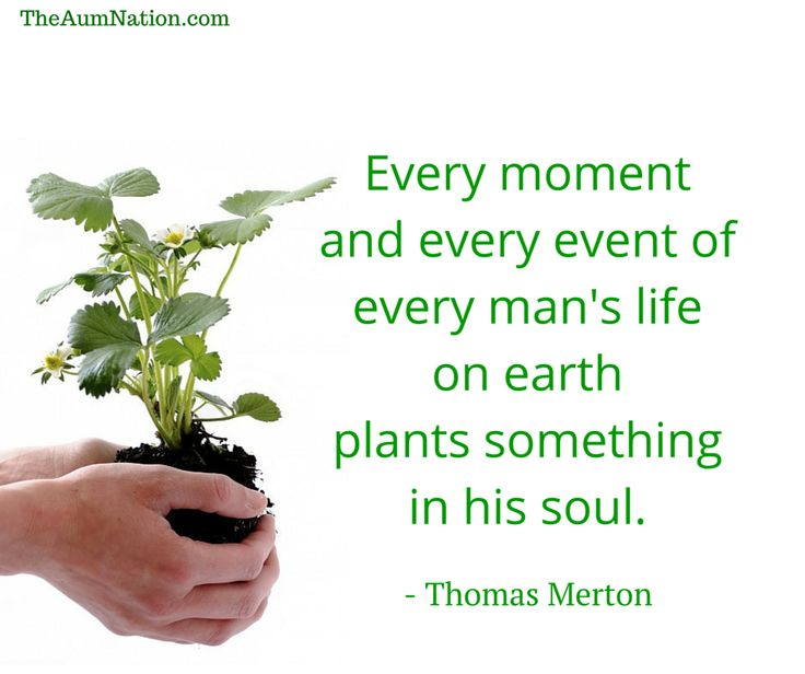 """""""Every moment and every event of every man's life on earth plants something in his soul."""" - Thomas Merton"""