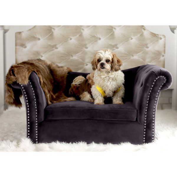 Best 25 Dog Sofa Bed Ideas On Pinterest Cat Couch Buy