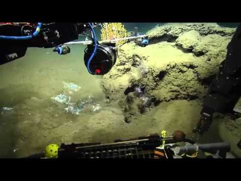 Тайны океанских глубин part 159, глубина погружения 1500 метров