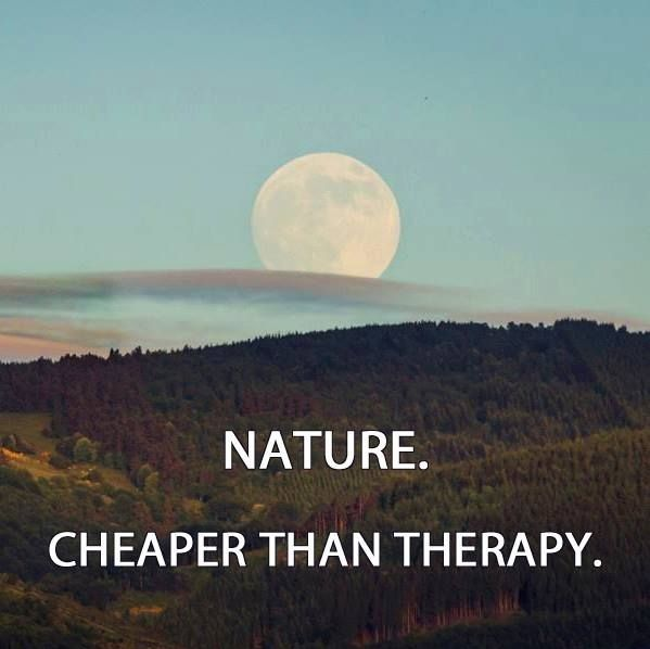 Best Nature Quotes: 287 Best Images About Nature Quotes On Pinterest