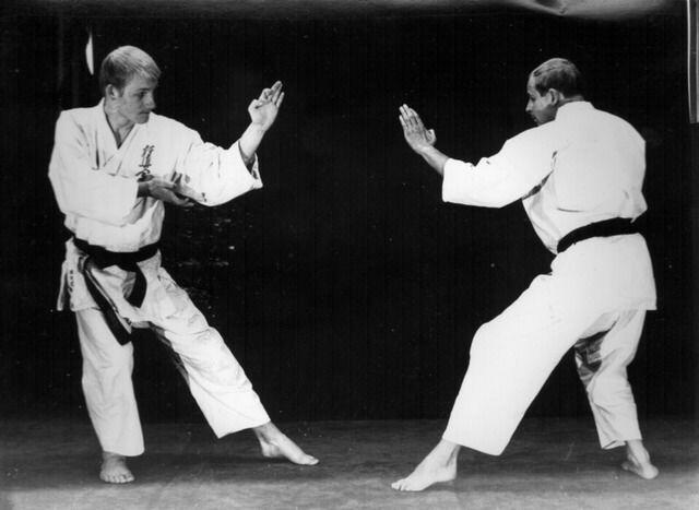 Rinus Schulz Kyokushinkai karate