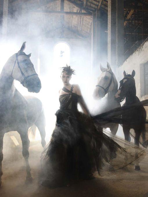 #photoshoot #moodboard #horses