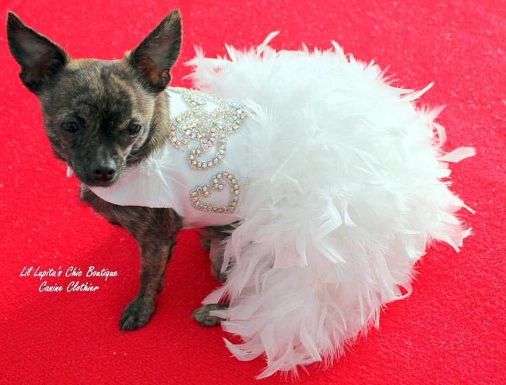 11 best Dog Wedding Attire images on Pinterest | Dog wedding ...