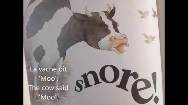Snore by Michael Rosen translated in French.  A dog on the farm snores loudly, keeping all the other animals awake.  How will they get him to stop snoring?!?!