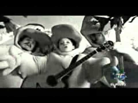 Un Pato (O Pato) - Natalia Lafourcade - YouTube