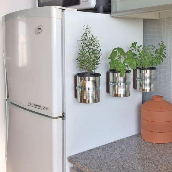 Poner plantas en la nevera para decorar