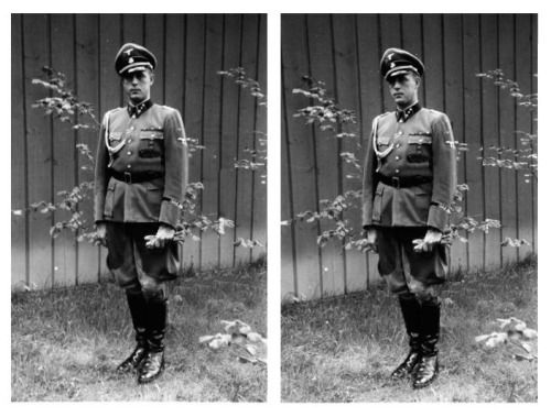 Otto Günsche by Heinrich Hoffmann, Medal Ceremony in July 1943.