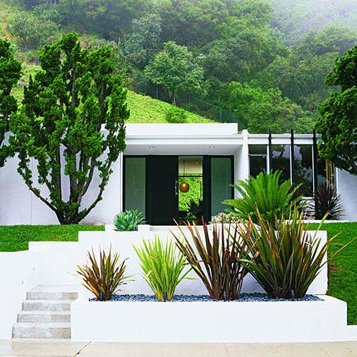 © Lisa Romerein    The stripped-down symmetry of the front entry is set off by a row of phormiums flanking the sidewalk.