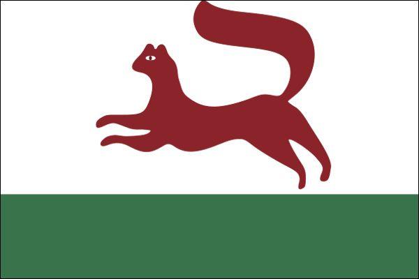flag of Ufa, Russia