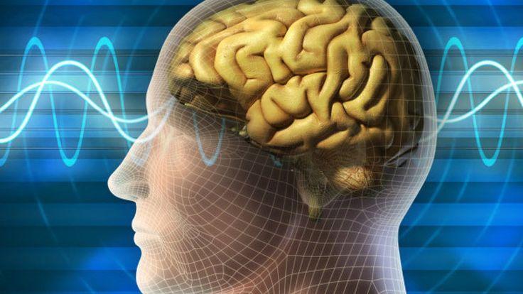 Ваш Мозг – это Ваш Компьютерный Центр.1