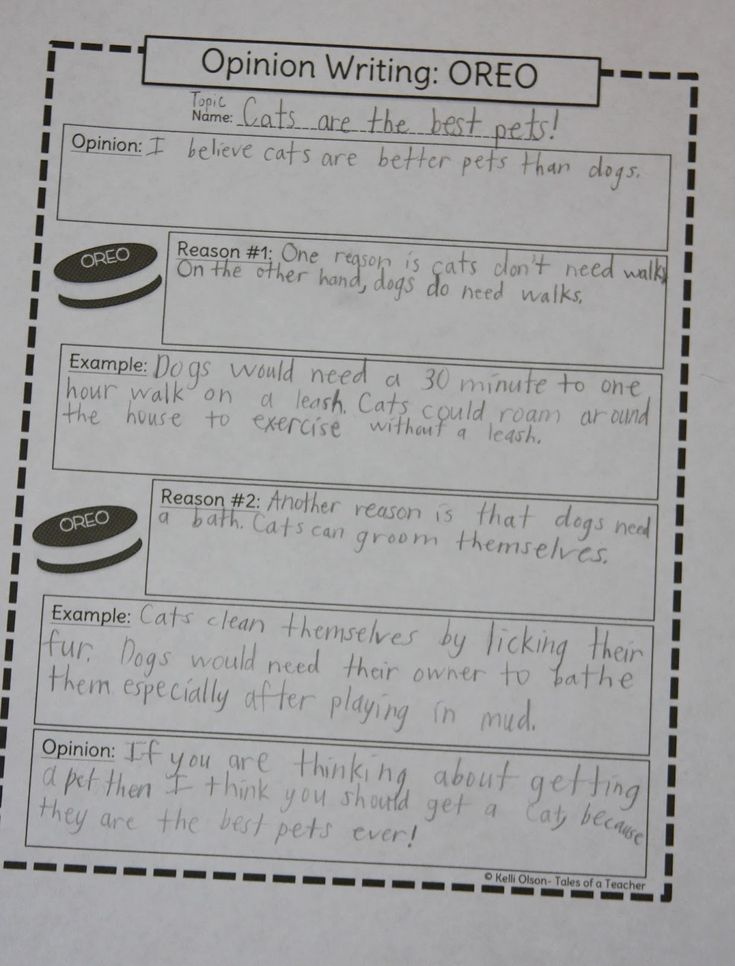 persuasive opinion writing Practice opinion and persuasive writing to support an idea for a class field trip destination.