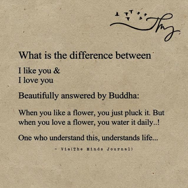 The Difference between Liking and Loving - http://themindsjournal.com/the-difference-between-liking-and-loving/