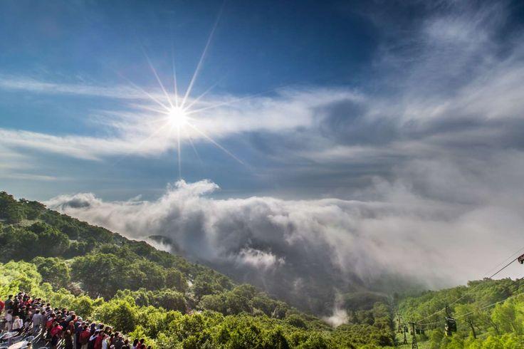 北海道トマム 雲海テラス - Getty Images