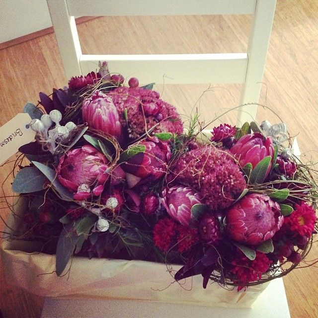 "@theflowergirlperth's photo: ""Native Maids""PLUM COLOURED BOUQUETS OF AUSTRALIAN NATIVE FLOWERS, PROTEA , GUM  AND LEAUCEDENDRON"