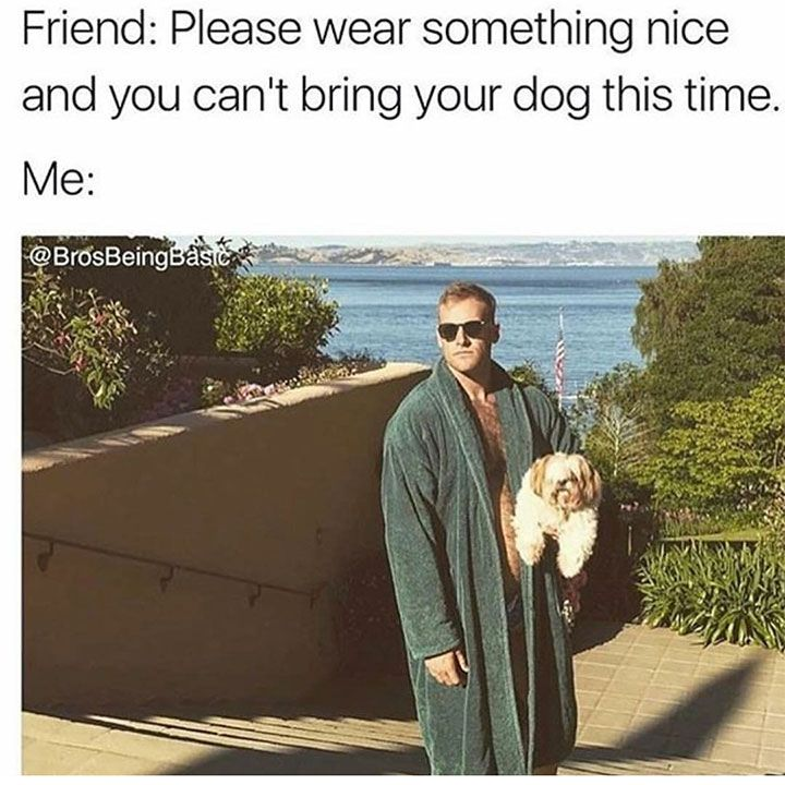 Funny Meme Pictures To Make You Laugh Uncontrollably - 48 | friend: please wear something nice and you can't bring your dog this time