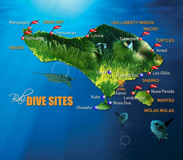 Dive Sites | Atlantis Bali Scuba Diving Center - Bali diving trip! When Sydney is 10 yrs old and can be certified.